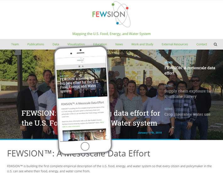 FEWSION.us screenshot